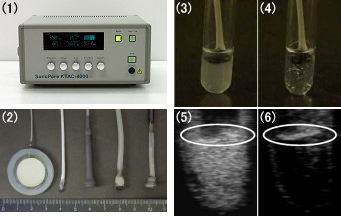 Fig. 5. Cavitation of Bubble Liposomes Exposed to Ultrasound.
